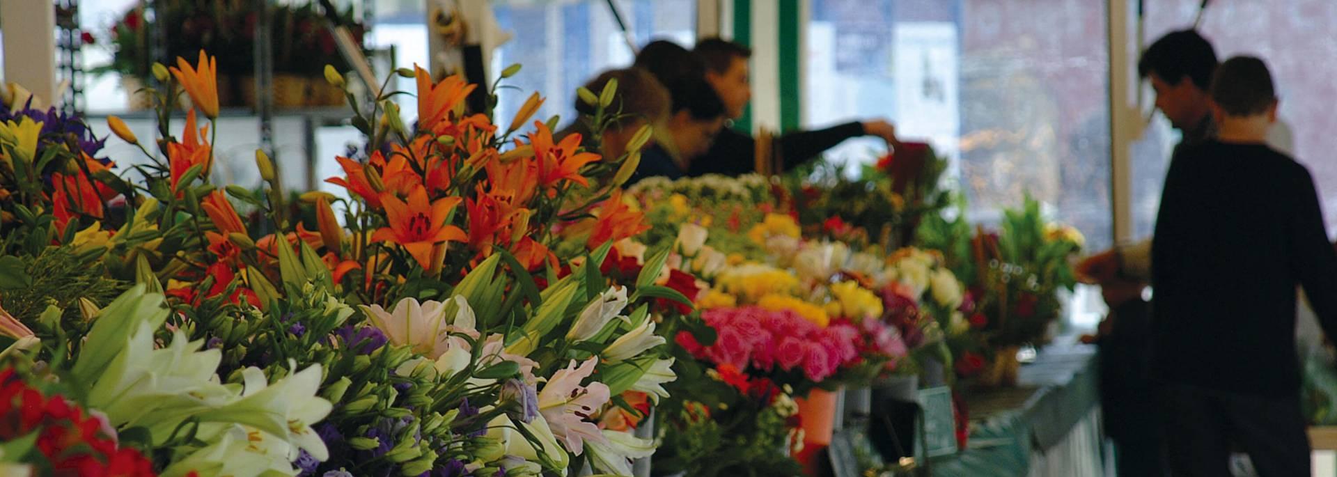 Marché aux fleurs sur la Place du Cygne à Chartres