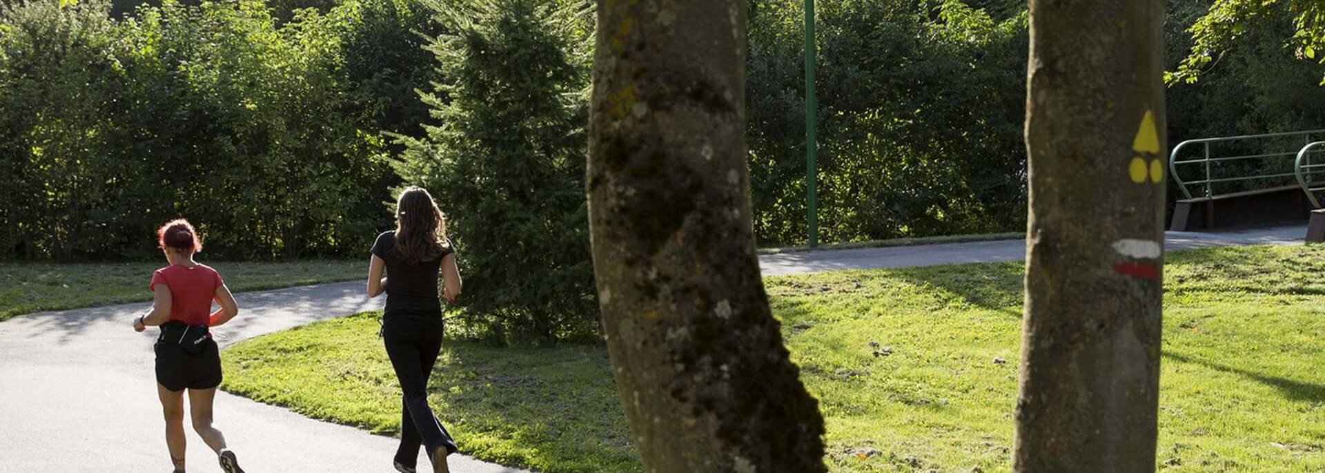Courir le long des bords de l'Eure sur le plan vert