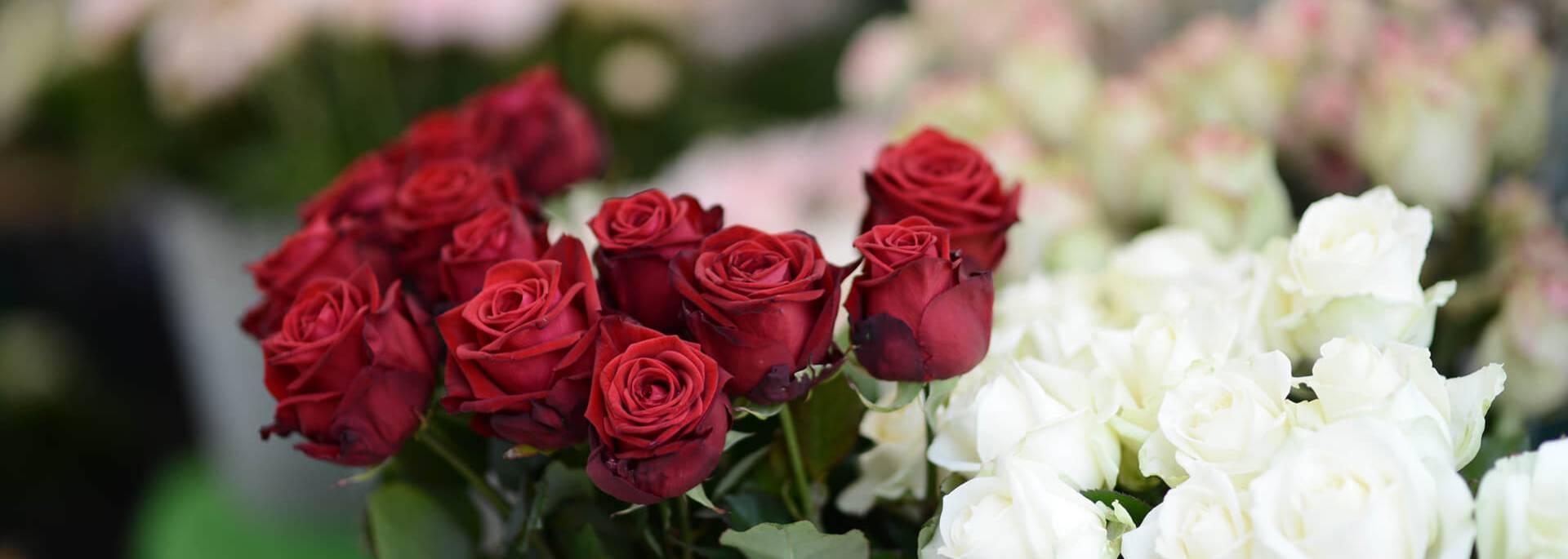 Marché aux fleurs sur la place du Cygne