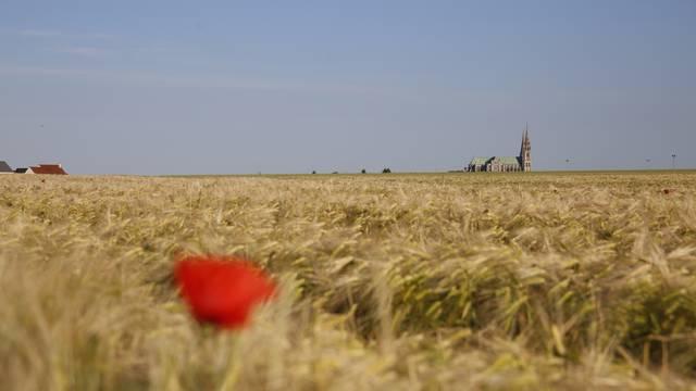 Vue de la cathédrale depuis les champs