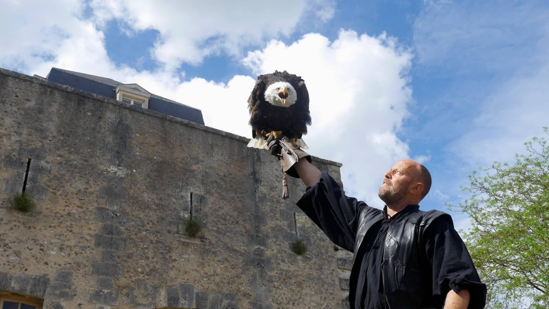 Présentation d'un aigle royal à Chartres 1254