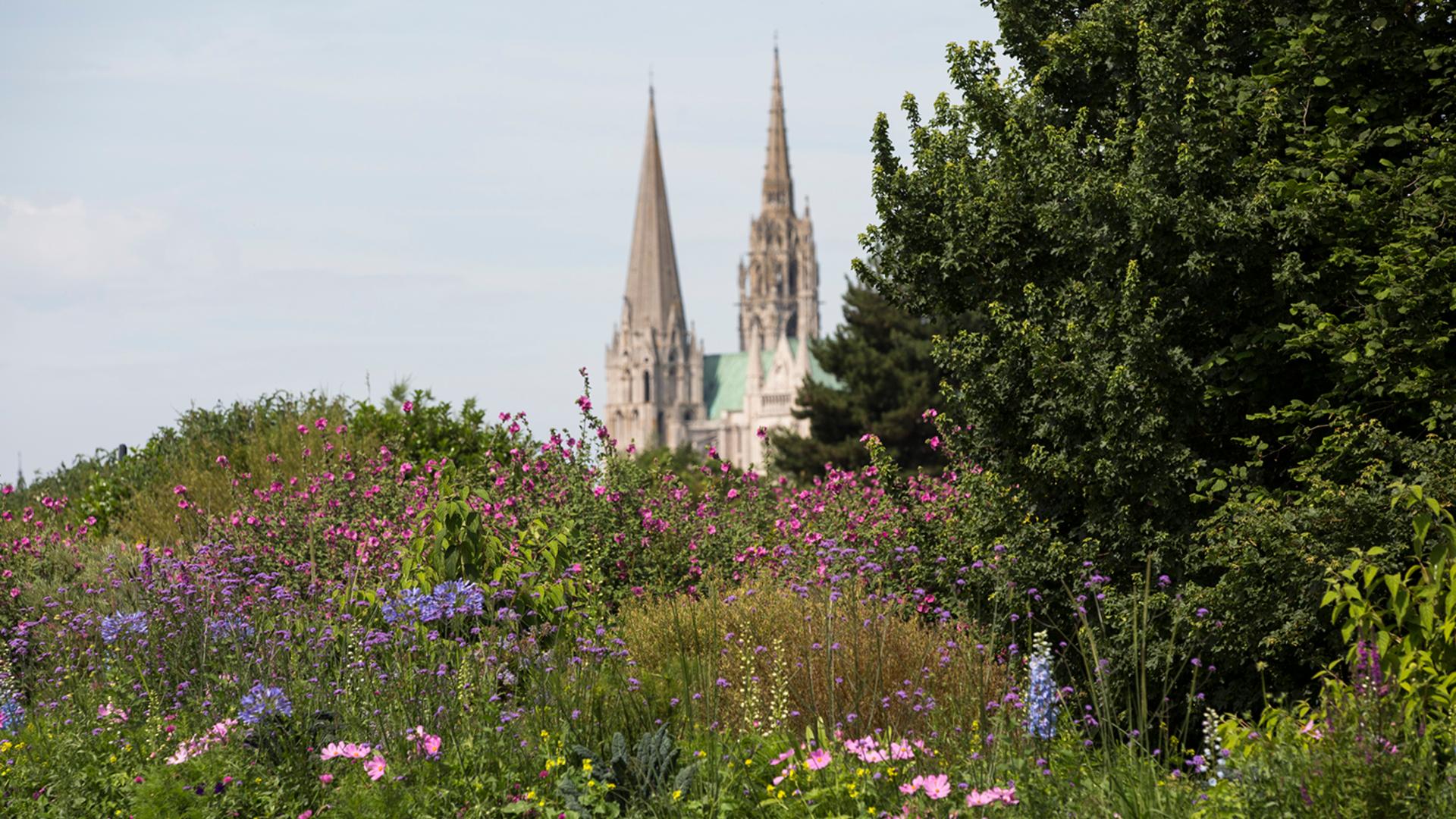 Espace vert donnant sur la cathédrale de Chartres