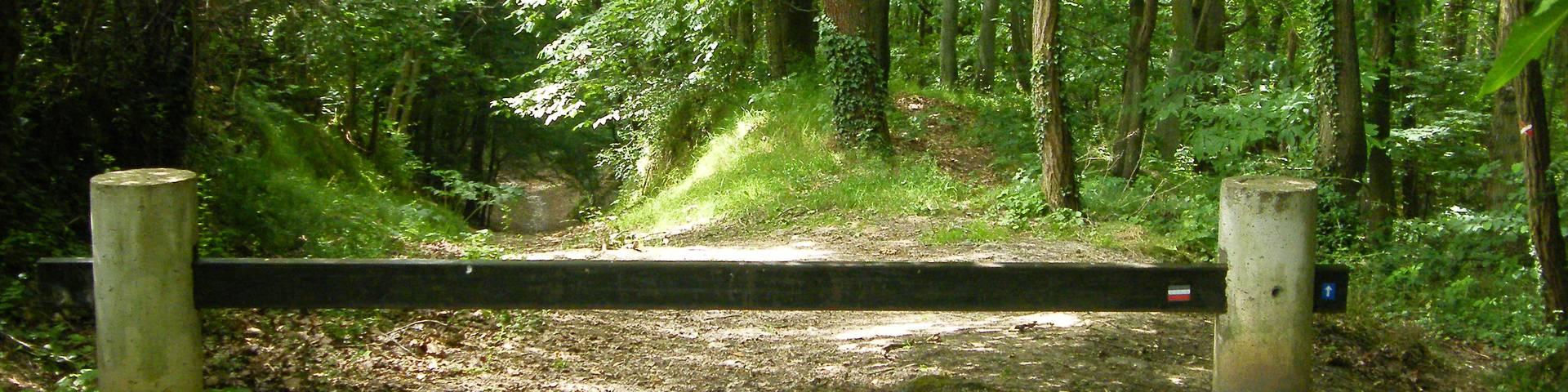 Chemin Charles Péguy