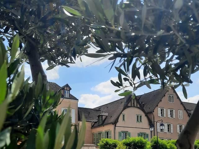Chartres en été