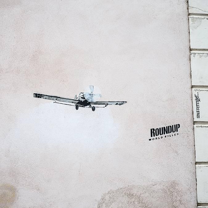 Avion RoundUp © Artiste : EZK - Photo : Studio Martino